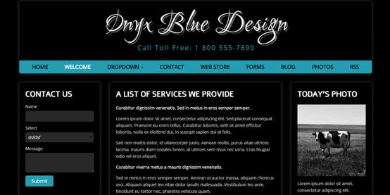 Onyx Blue